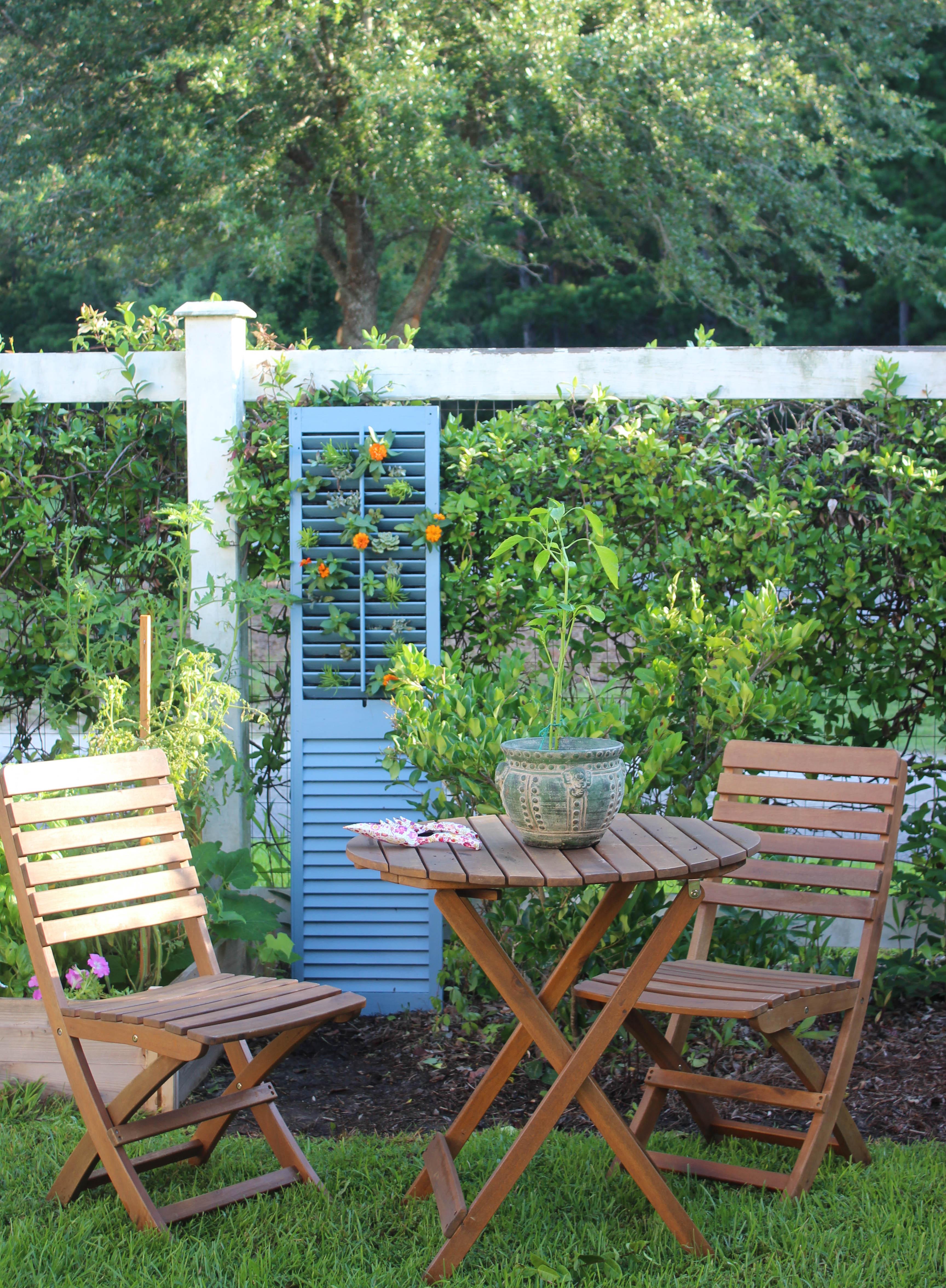 Diy Vertical Succulent Garden Simple Nature Decor